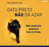Gato preto não dá sorte nem azar